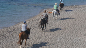One-Magic-moment-and-many-reasons-to-Love-horseriding-on-the-beach
